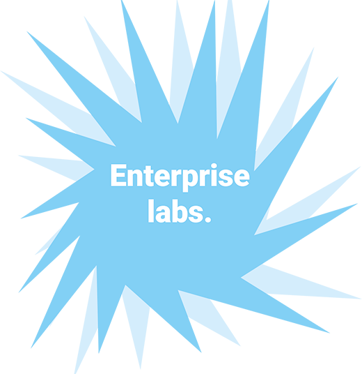 Enterprise labs.