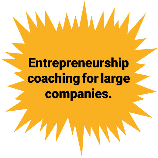 Entrepreneurship coaching for large companies